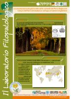 La Selva e il Castagno, binomio inscindibile